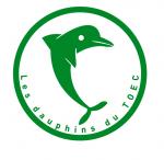 Les dauphins du TOEC